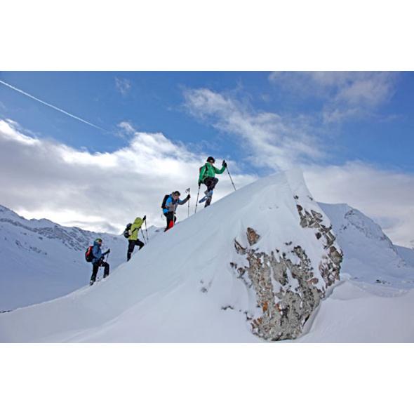 Schneeschuhwanderung in Adelboden