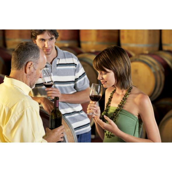 Weinseminar für Geniesser