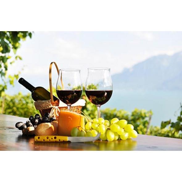 Weinwanderung mit Verkostung in Rüdesheim