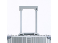 Aleon Business Trolley Vertical Business Carry-On 50cm Platin